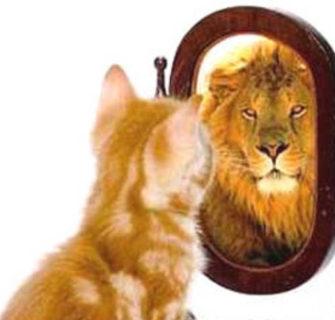 Algumas maneiras de você ganhar auto-estima e Viver Melhor!